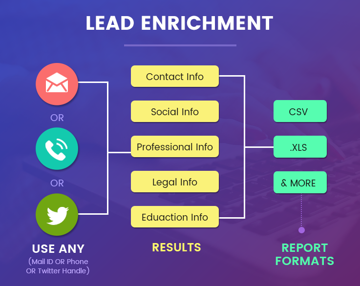 Search Social Profiles & Lead Enrichment Tool