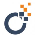 SEO Audit - Logo